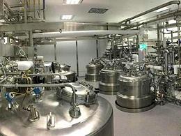 生物发酵赖氨酸废气治理